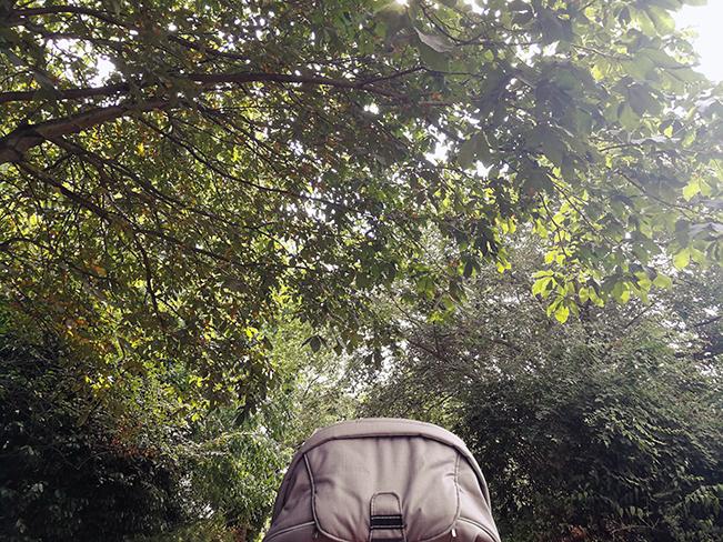 Im Park mit Kinderwagen